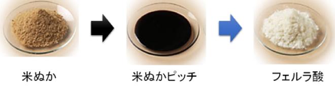 米ぬか 米ぬかピッチ フェルラ酸