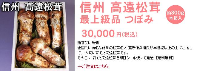 信州 高遠松茸 最上級品 つぼみ