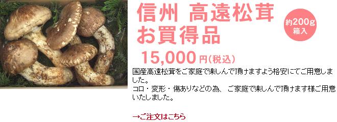 信州 高遠松茸 お買い得品