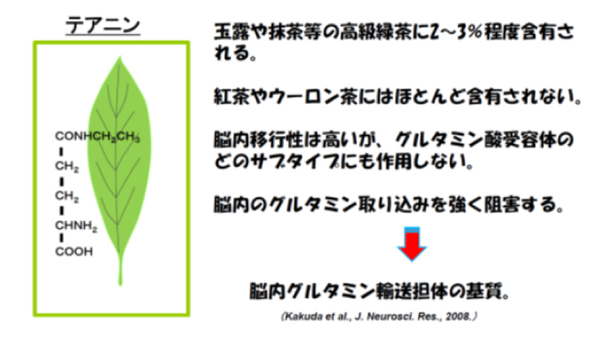 緑茶アミノ酸テアニン